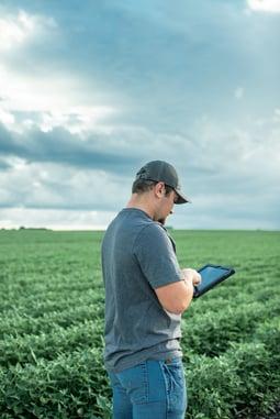 grower in soybean field