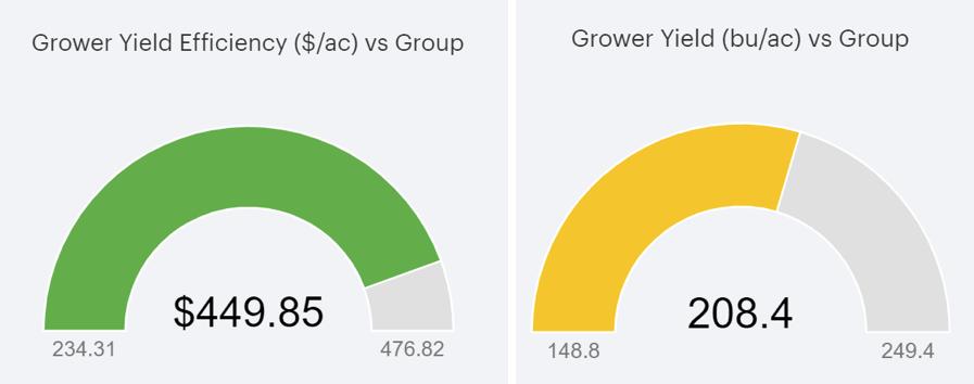 yield efficiency score can determine corn profits