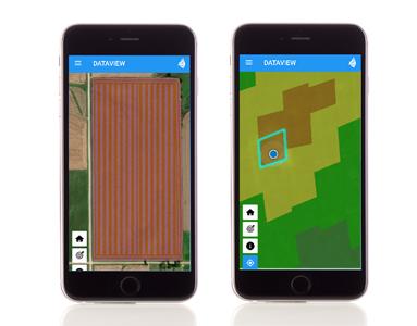 dataview field scouting app