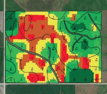 grid soil test map