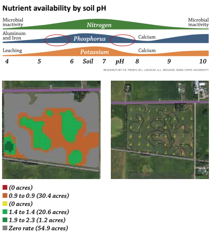 nutrient availability by soil ph