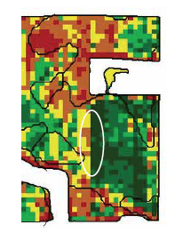 analyze yield data with your yield map