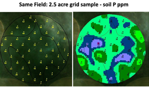 grid soil sample benefits at 2.5 acres