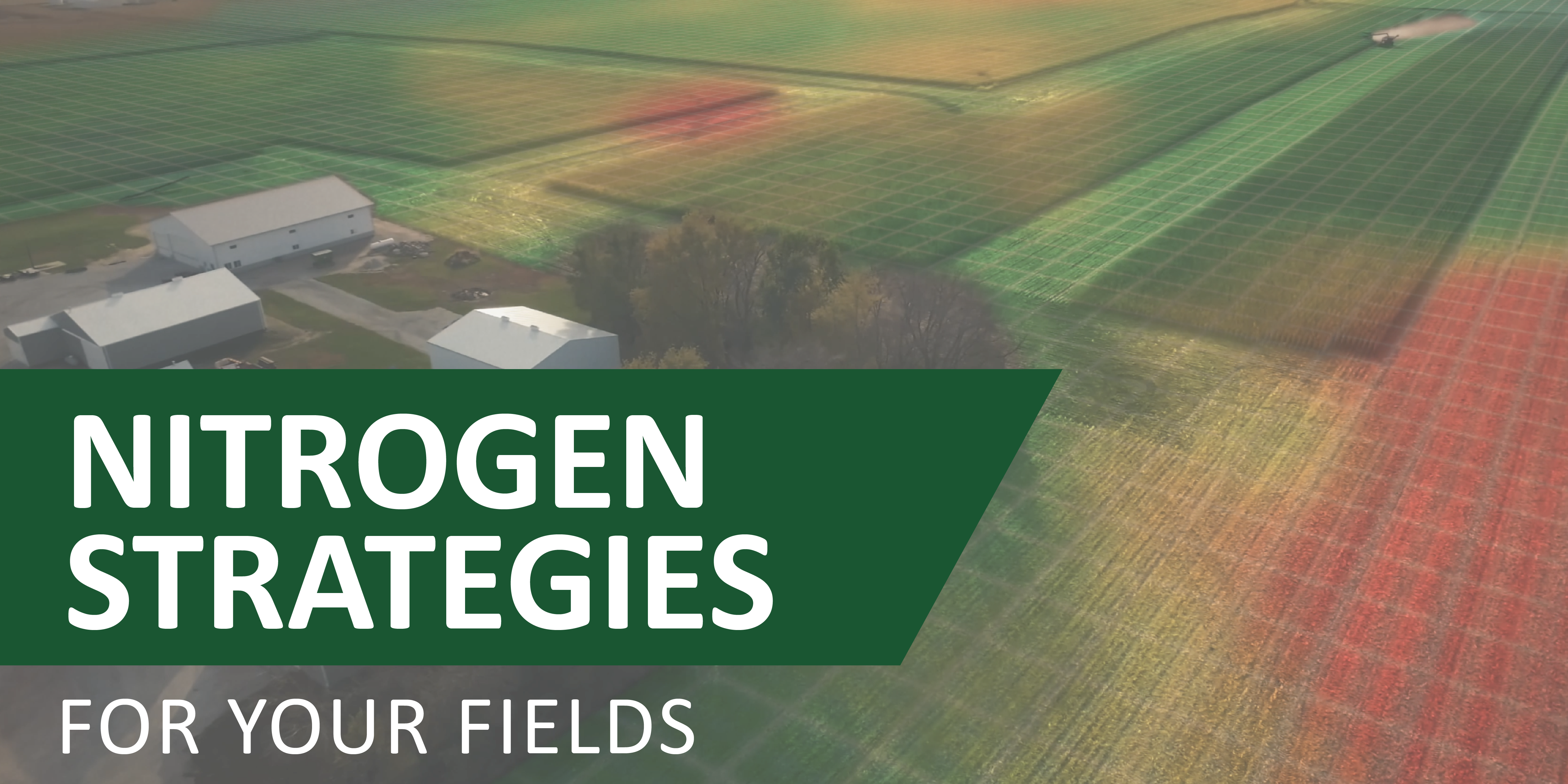 Nitrogen Strategies for your Fields