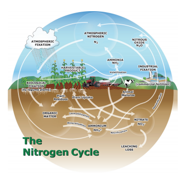managing fall-applied nitrogen