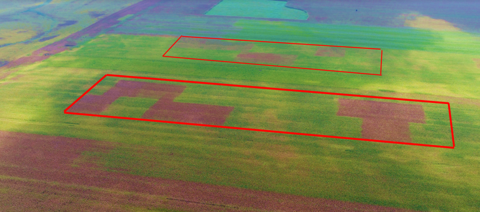 Response to Fungicide: It Varies